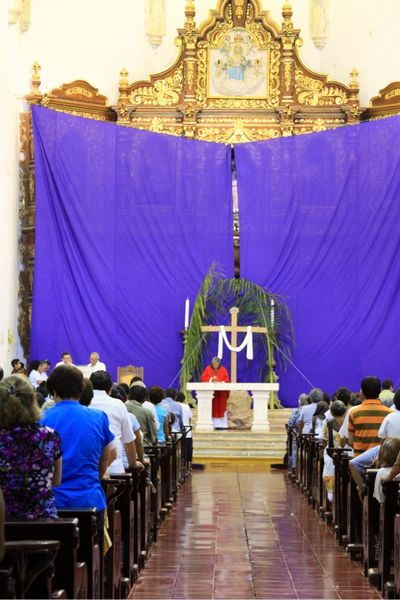 Purple cloth of lent