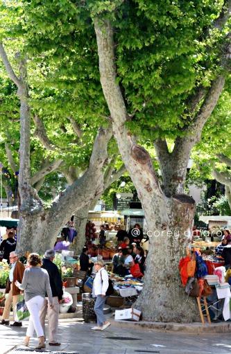 French street market