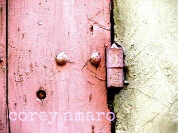 Pink-hinge corey amaro