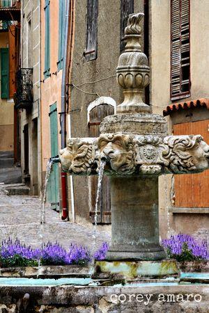 Valensole village lavender provence