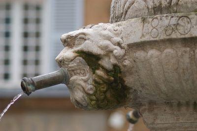 Fountain , Cotignac, Denise