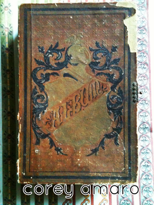 Tattered Photo Album Book Box