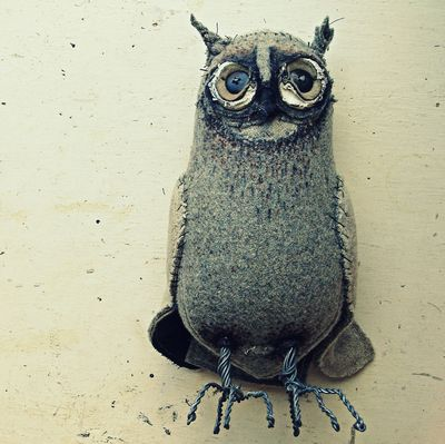 Mr finch owl