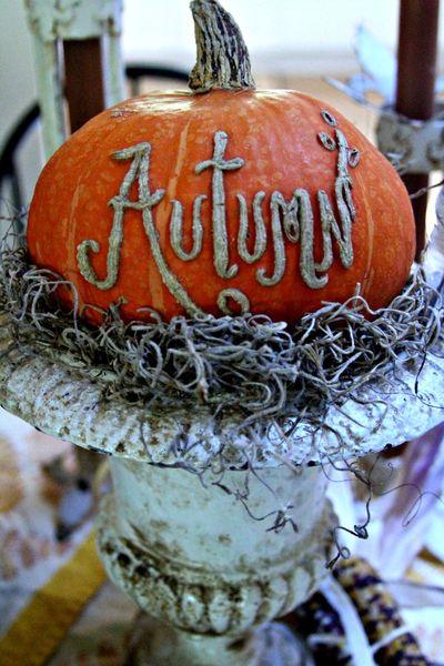 Autumn pumpkin JPG