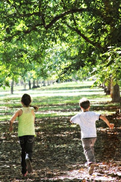 Running in the orchard