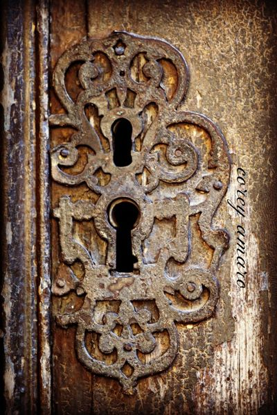 French antique lock cover