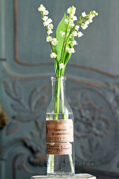 Old bottle as a vase