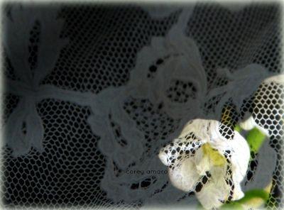 Muguet under lace