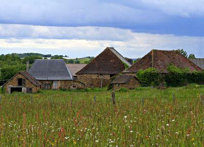 Farm in France