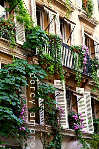 Paris enchanted garden facade
