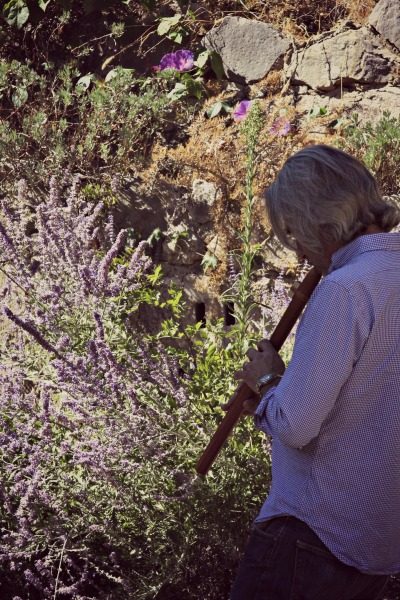 Flute in provence