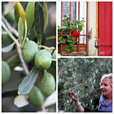 Provence France, French happiness