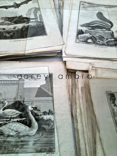 French papers, documents, antique engravings