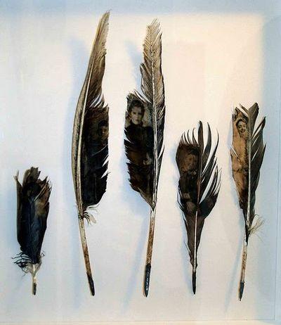 Louise richardson wings