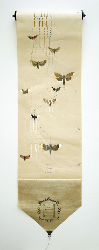 Louise richardson butterfly music