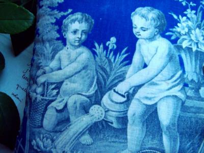 blue toile corey amaro