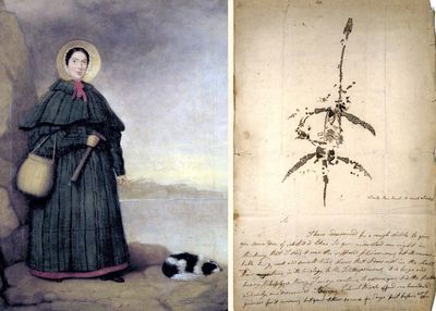 Mary Anning with drawing