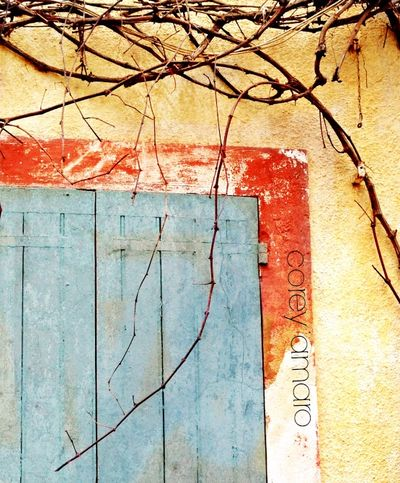 Provence local color