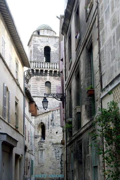 Arles corey amaro