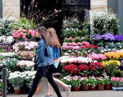 Paris spring flowers spilling