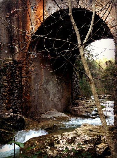 Run deep run wild the river under the bridge
