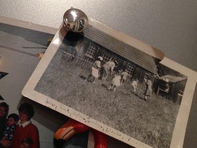 Photos of the Fridge