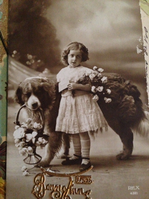 French Postcards Dog Gone