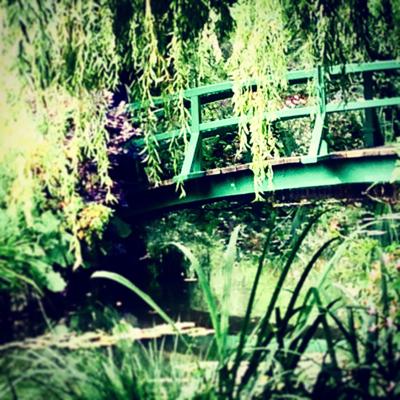 Where the Flowers Grow: Monet