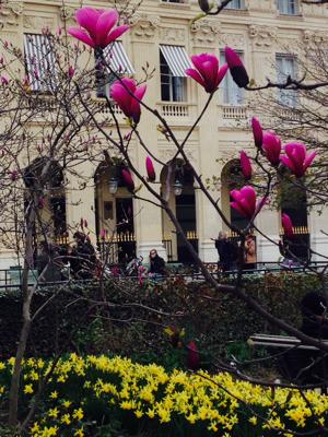 Palais Royal Paris Spring
