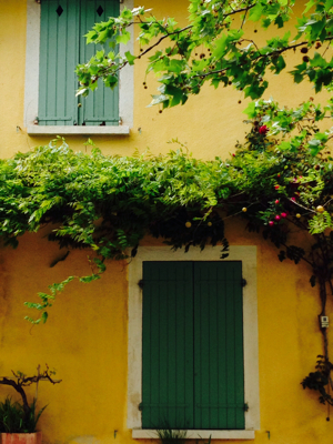 Spring Color in Provence