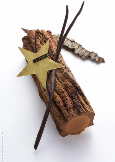 Le_bristol_paris_epicure_plats_buche_de_noel_chocolat__3__613169893_north_373x524_white