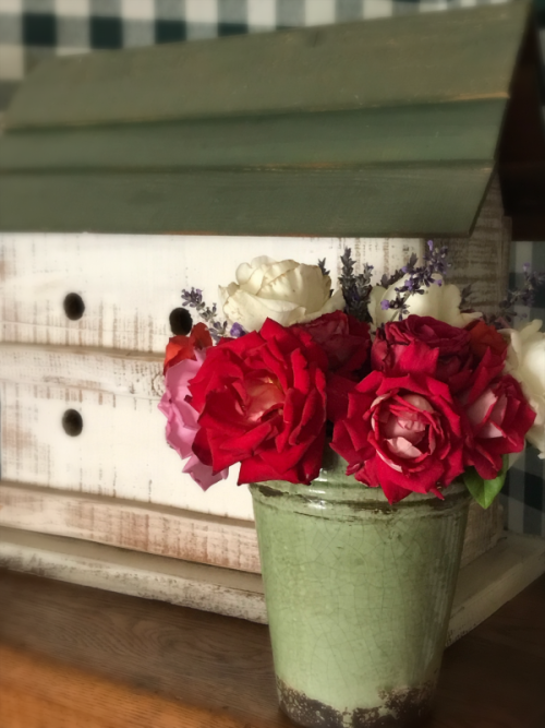 roses, home grown
