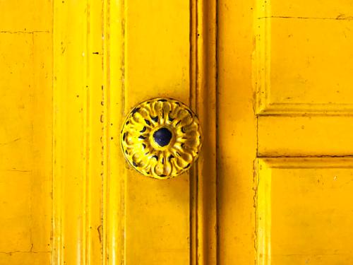 Doors and flowers in Paris