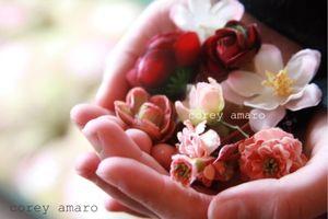 Flowers in hand corey amaro