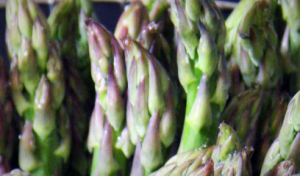 Tips of asparagus
