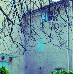 The Tiny House's Garden