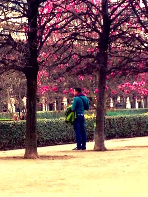 Spring in Paris corey amaro