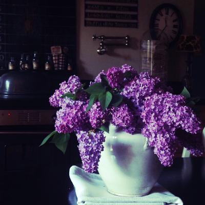 Bringing Spring Inside, COREY AMARO PHOTOGRAPH
