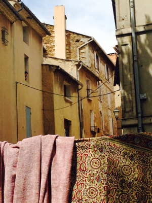Provence: French Muse