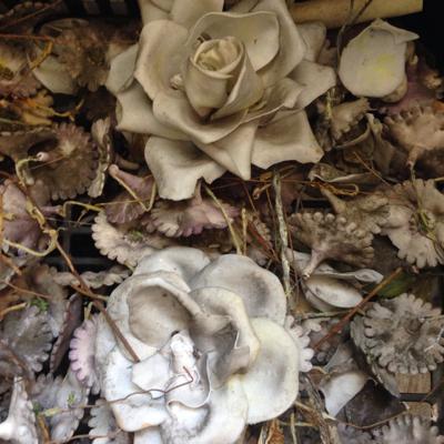 Antique Porcelain Flowers