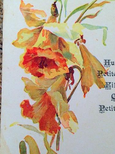 French Menu  Daffodils 1914