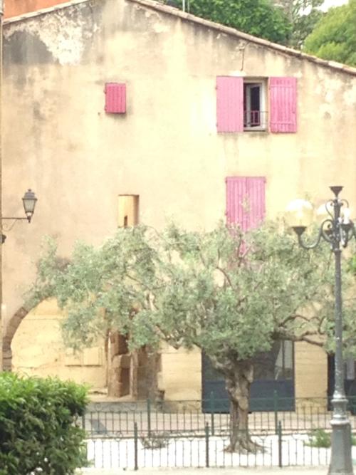 corey amaro, Provence, Autumn