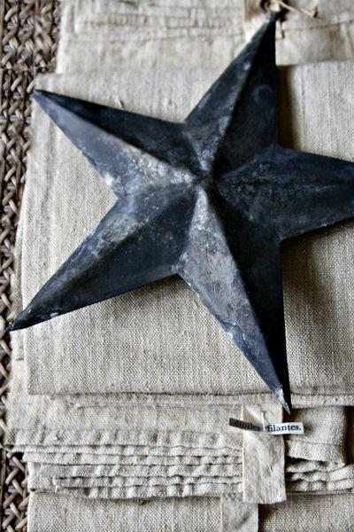 Shooting star corey amaro