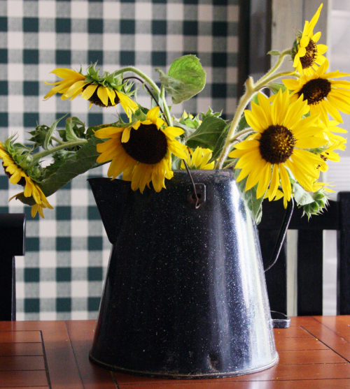 Mom sunflowers