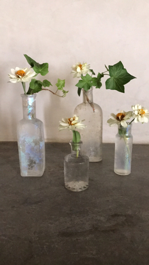 corey amaro photo bottle with flower
