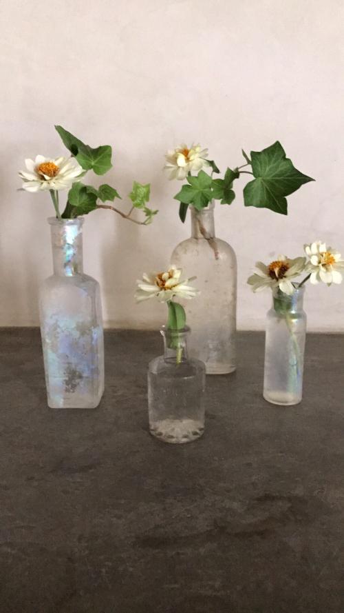 corey amaro photo bottle with flower
