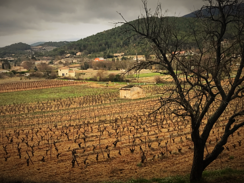 A Winter Walkabout  Provence