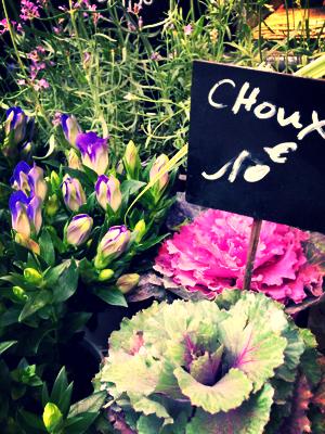 Flowers on Saturday