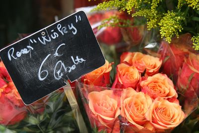 Corey amaro flower signs paris