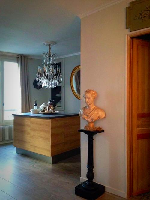 paris apartment corey amaro photography and design